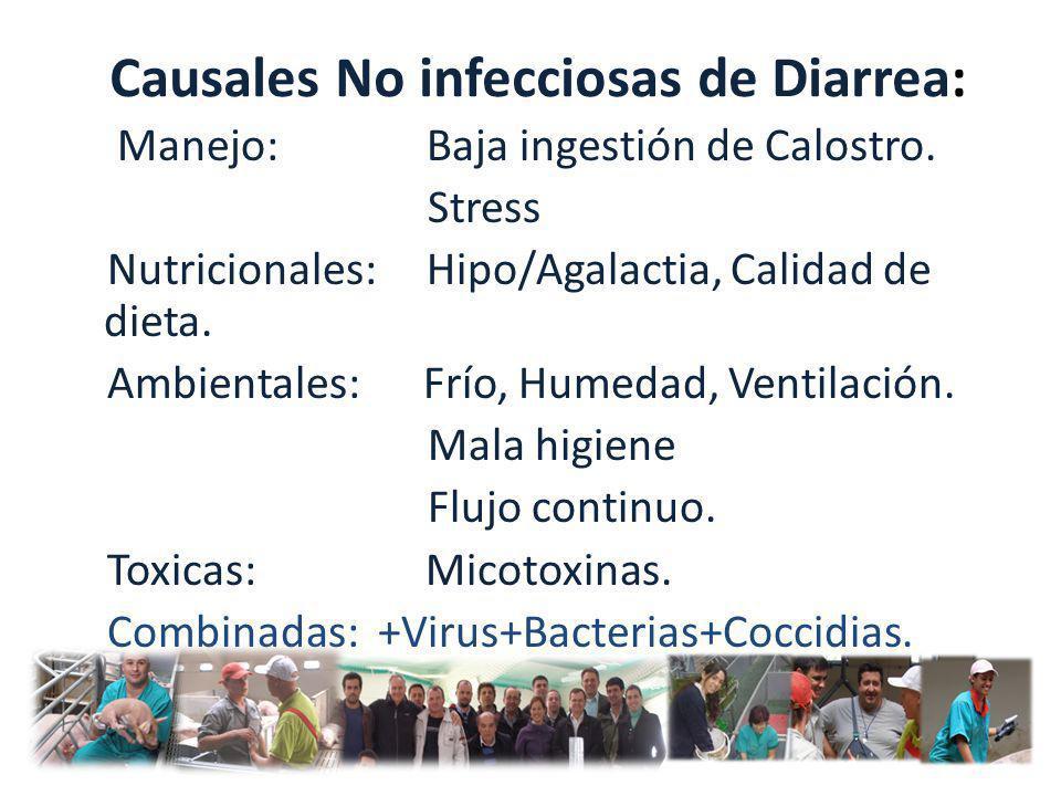 Causales No infecciosas de Diarrea: Manejo: Baja ingestión de Calostro. Stress Nutricionales: Hipo/Agalactia, Calidad de dieta. Ambientales: Frío, Hum