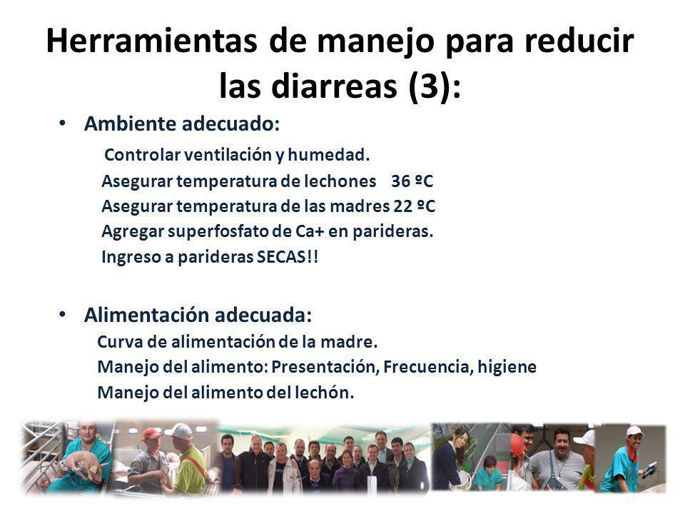 Herramientas de manejo para reducir las diarreas (3): Ambiente adecuado: Controlar ventilación y humedad. Asegurar temperatura de lechones 36 ºC Asegu
