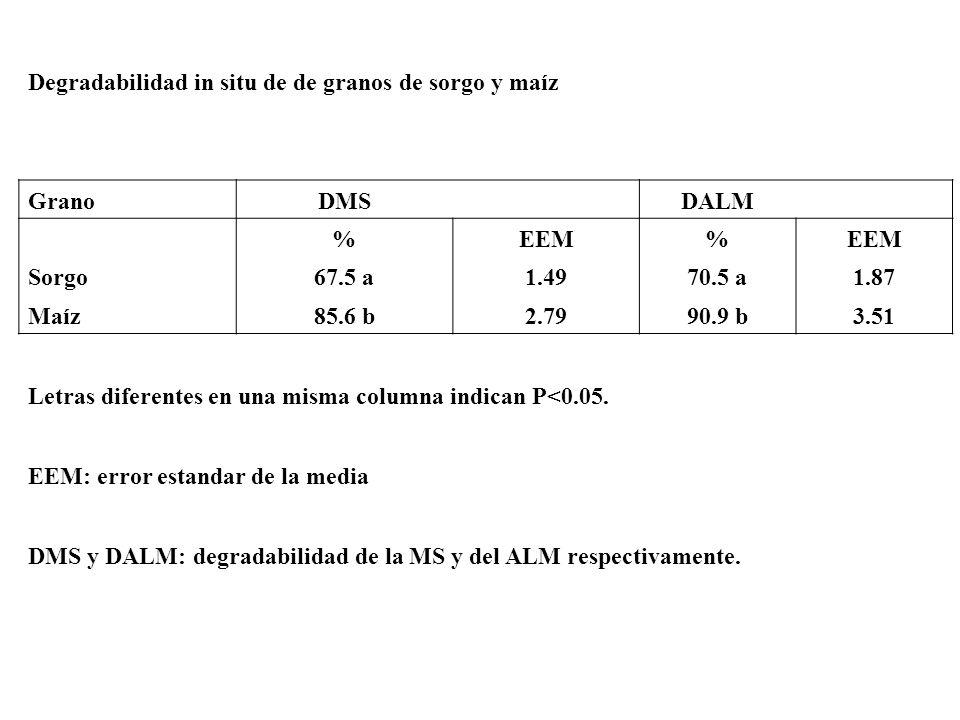 Ing. Agr. Gustavo Clemente Degradabilidad in situ de de granos de sorgo y maíz GranoDMS DALM %EEM% Sorgo67.5 a1.4970.5 a1.87 Maíz85.6 b2.7990.9 b3.51