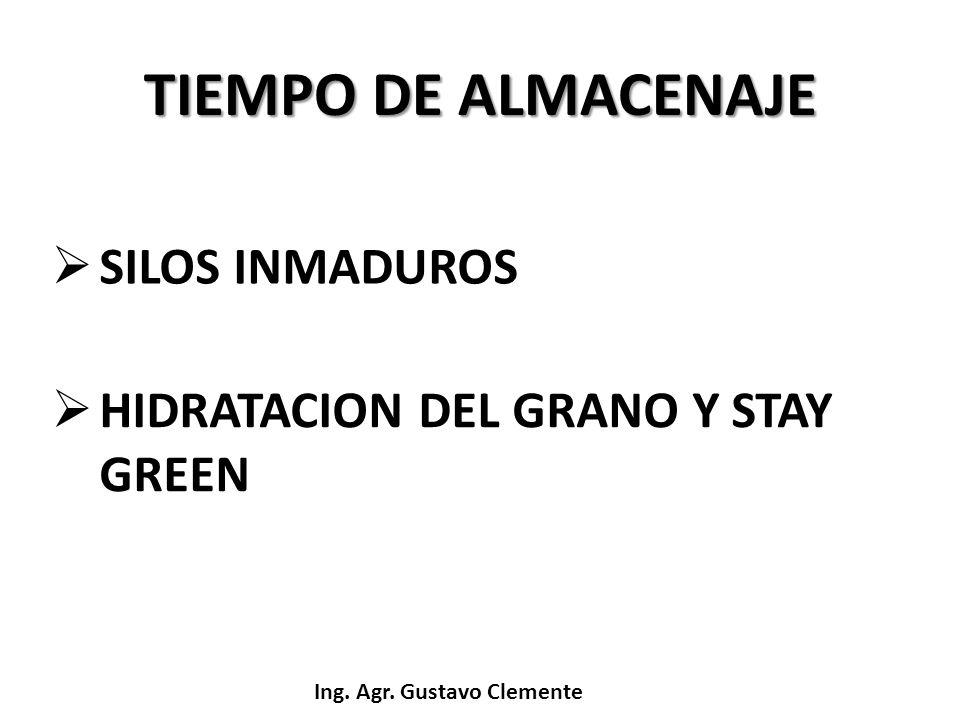 Ing. Agr. Gustavo Clemente TIEMPO DE ALMACENAJE SILOS INMADUROS HIDRATACION DEL GRANO Y STAY GREEN