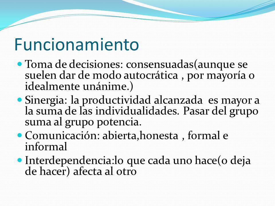 Funcionamiento Toma de decisiones: consensuadas(aunque se suelen dar de modo autocrática, por mayoría o idealmente unánime.) Sinergia: la productividad alcanzada es mayor a la suma de las individualidades.