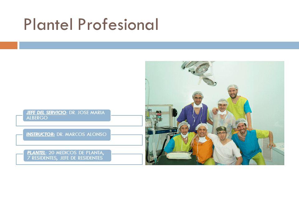 Plantel Profesional JEFE DEL SERVICIO: DR.JOSE MARIA ALBERGO INSTRUCTOR: DR.