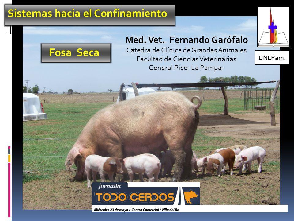 Sistemas hacia el Confinamiento Fosa Seca UNLPam.Med.