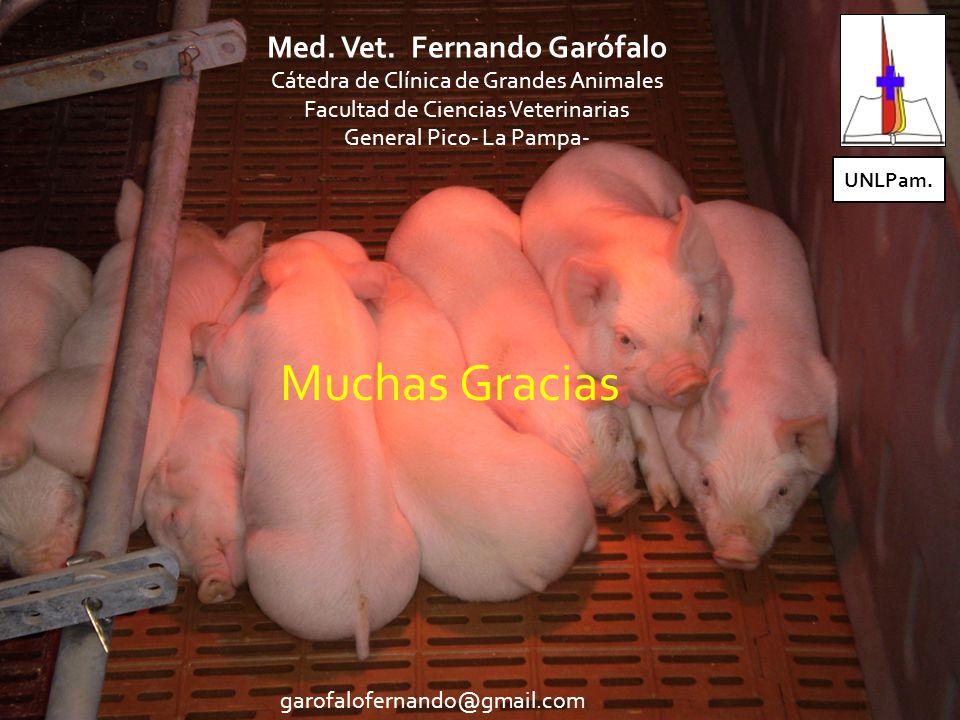 Muchas Gracias garofalofernando@gmail.com Med.Vet.