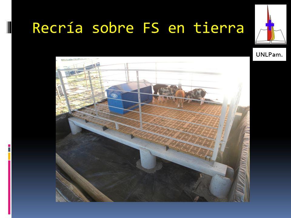 Bases del Piso para Terminación en Fosa Seca UNLPam. garofalofernando@gmail.com