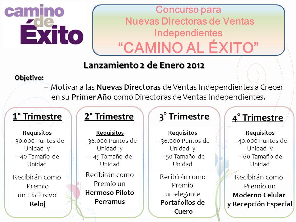 Concurso para Nuevas Directoras de Ventas Independientes CAMINO AL ÉXITO Lanzamiento 2 de Enero 2012 Objetivo: Motivar a las Nuevas Directoras de Vent