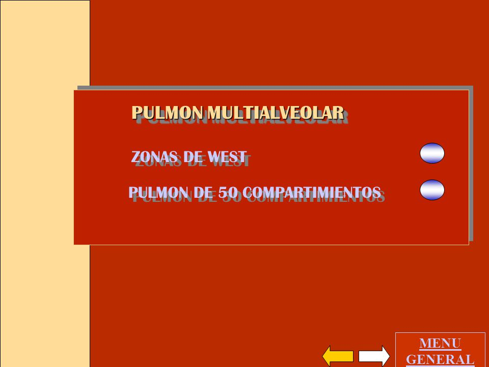 PULMON MULTIALVEOLAR ZONAS DE WEST PULMON DE 50 COMPARTIMIENTOS GASES INERTES PULMON HOMOGENEO PULMON NORMAL DISTRIBUCION NORMAL MENU GENERAL CUANTIFI