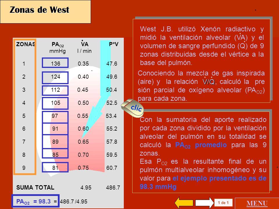 ZONAS PA O2 VA P*V Ca O2 Q C*Q mmHg l / min cc100cc l / min cc/min 1 136 0.35 47.6 20.3 0.07 14.1 2 124 0.40 49.6 20.2 0.19 38.4 3 112 0.45 50.4 20.1 0.33 66.3 4 105 0.50 52.5 19.9 0.50 99.5 5 97 0.55 53.4 19.8 0.66 131.0 6 91 0.60 55.2 19.8 0.83 164.0 7 89 0.65 57.8 19.7 0.98 193.0 8 85 0.70 59.5 19.6 1.15 225.0 9 81 0.75 60.7 19.5 1.29 252.0 SUMA TOTAL 4.95 486.7 PA O2 = 98.3 = 486.7 /4.95 Zonas de West Con la sumatoria del aporte realizado por cada zona dividido por la ventilación alveolar del pulmón en su totalidad se calculó la PA O2 promedio para las 9 zonas.