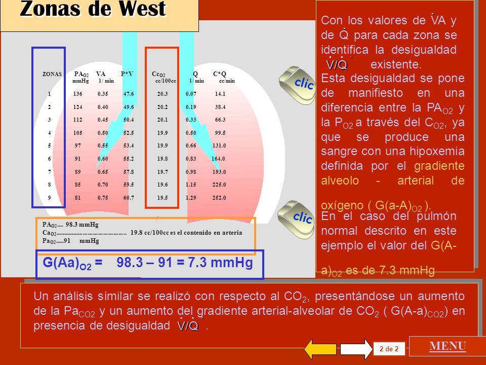 ZONAS PA O2 VA P*V Cc O2 Q C*Q mmHg l / min cc/100cc l / min cc/min 1 136 0.35 47.6 20.3 0.07 14.1 2 124 0.40 49.6 20.2 0.19 38.4 3 112 0.4550.4 20.1 0.33 66.3 4 105 0.50 52.5 19.9 0.50 99.5 5 97 0.55 53.4 19.9 0.66 131.0 6 91 0.60 55.2 19.8 0.83 164.0 7 89 0.65 57.8 19.7 0.98 193.0 8 85 0.70 59.5 19.6 1.15 225.0 9 81 0.75 60.7 19.5 1.29 252.0 PA O2....