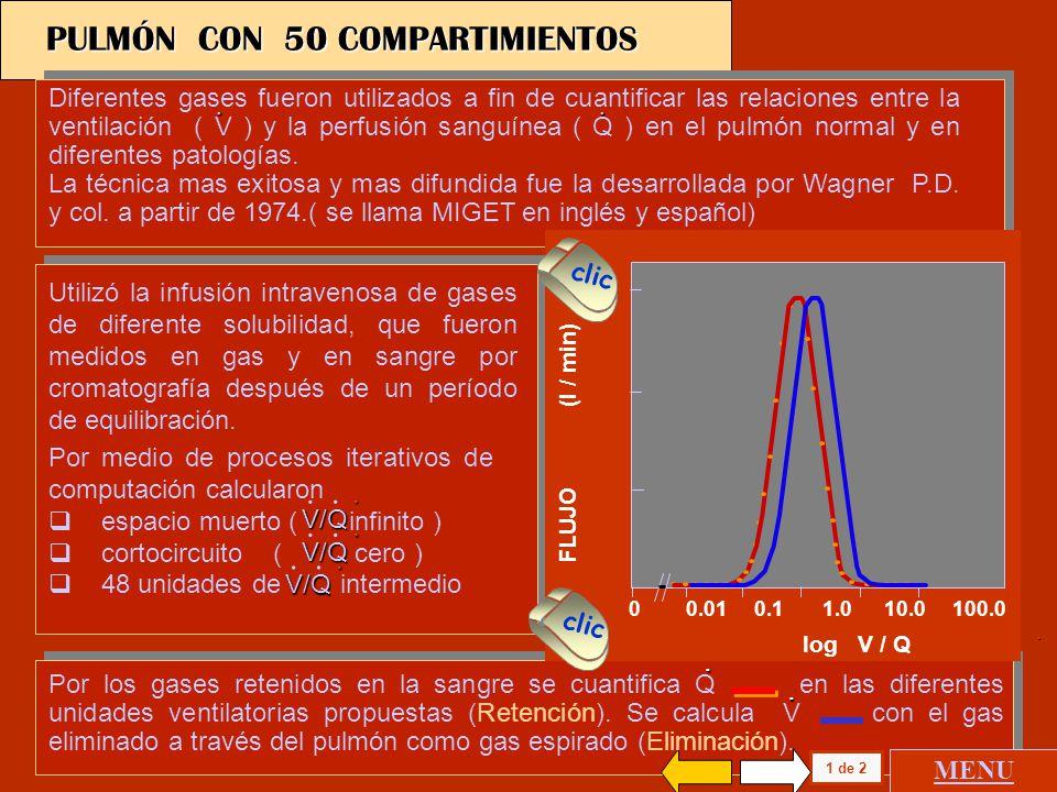 SOLUBILIDAD 1.0 0.5 0 0 0.01 0.1 1.0 10.0 100.0 SF6 Etano Ciclopropano Halotano Eter Acetona RETENCION Pa Pv Pv Pa PULMÓN CON 50 COMPARTIMIENTOS 1 de 2 log V / Q 0 0.01 0.1 1.0 10.0 100.0 FLUJO (l / min) MENU clic Diferentes gases fueron utilizados a fin de cuantificar las relaciones entre la ventilación ( V ) y la perfusión sanguínea ( Q ) en el pulmón normal y en diferentes patologías.