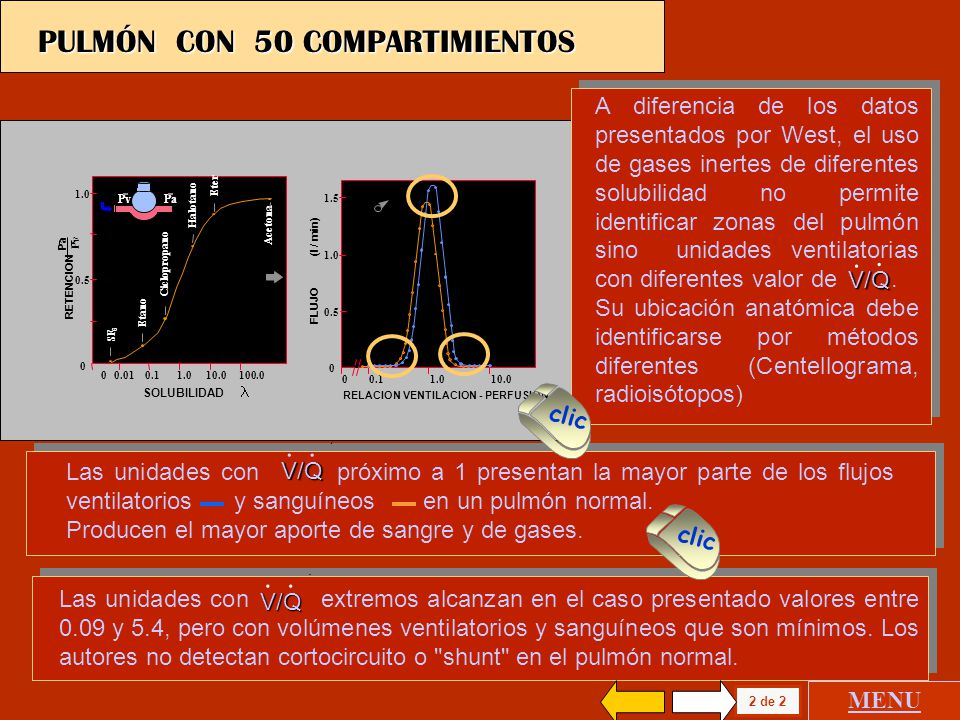 SOLUBILIDAD 1.0 0.5 0 0 0.01 0.1 1.0 10.0 100.0 SF 6 Etano Ciclopropano Halotano Eter Acetona RETENCION Pa Pv Pv Pa RELACION VENTILACION - PERFUSION 1.5 1.0 0.5 0 0 0.1 1.0 10.0 FLUJO (l / min) 2 de 2 PULMÓN CON 50 COMPARTIMIENTOS MENU A diferencia de los datos presentados por West, el uso de gases inertes de diferentes solubilidad no permite identificar zonas del pulmón sino unidades ventilatorias con diferentes valor de.