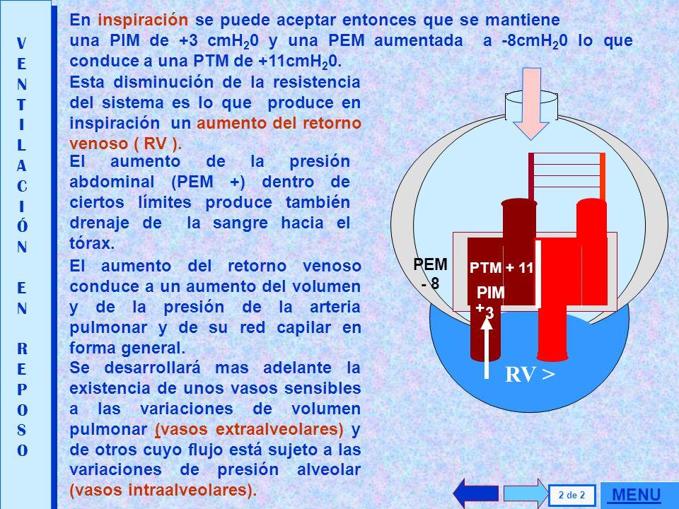 PTM = PIM - PEM PTM = +3 - ( -3 ) = + 6 VENTILACIÓN EN REPOSOVENTILACIÓN EN REPOSO PEM -3. 1 de 2 Durante la inspiración se produce una presión subatm