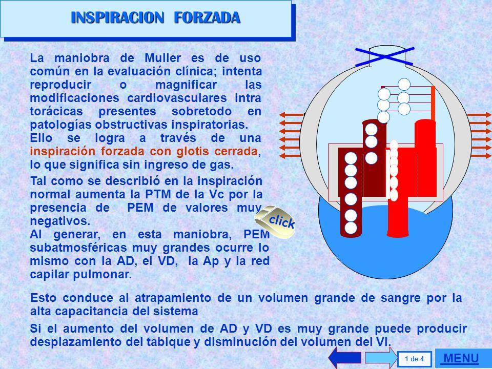 VENTILACION FORZADA INSPIRACION FORZADA ESPIRACION FORZADA VENTILACION FORZADA INSPIRACION FORZADA ESPIRACION FORZADA. MENU GENERAL