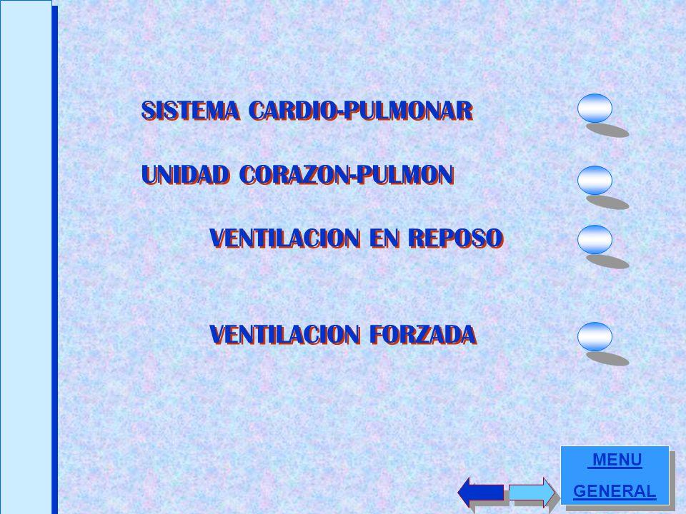 INTERACCION CORAZON – PULMON INTERACCION CORAZON – PULMON PRUEBAS DE ESFUERZO MARIA de LEW