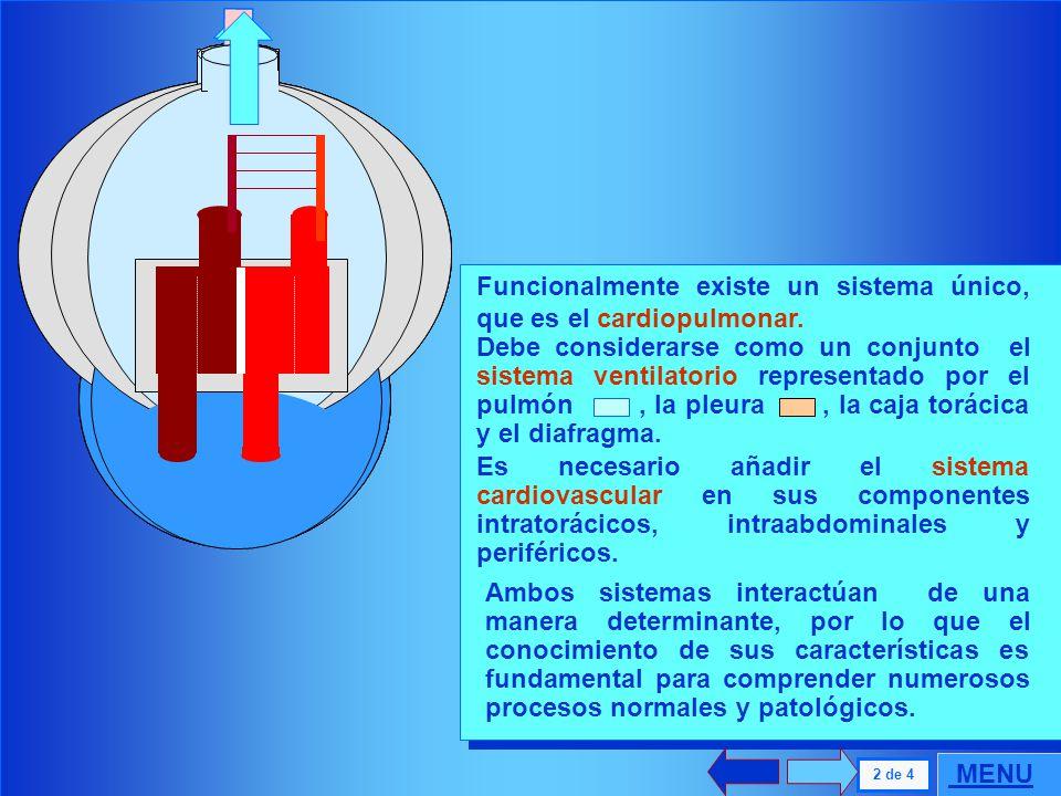 AD: Aurícula Derecha AI : Aurícula Izquierda Ao : Aorta Ap : Arteria Pulmonar Vc: Vena cava Vp: Vena pulmonar VD : Ventrículo Derecho VI : Ventrículo
