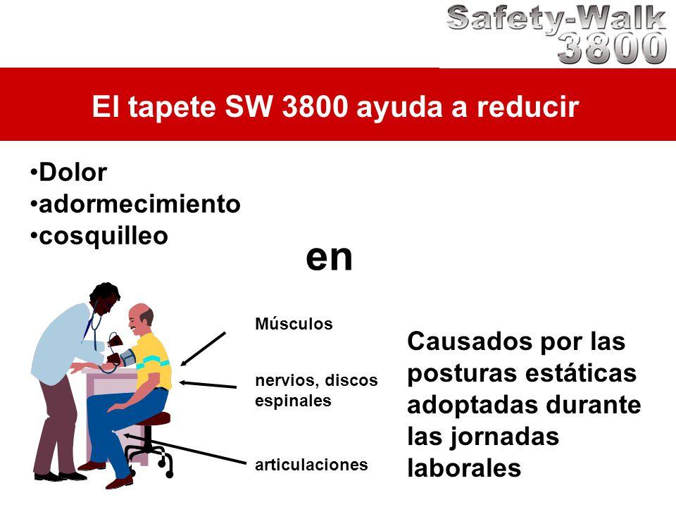 Músculos El tapete SW 3800 ayuda a reducir Dolor adormecimiento cosquilleo nervios, discos espinales articulaciones en Causados por las posturas estát