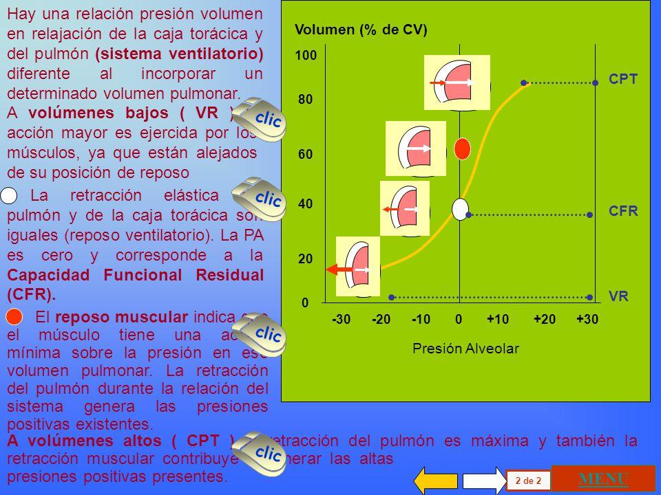 100 80 60 40 20 0 Volumen (% de CV) P+P - -90 -60 -30 0 +30 +60 +90 Curva de relajación del Sistema Ventilatorio ( sv ) Se ha presentado antes la curv