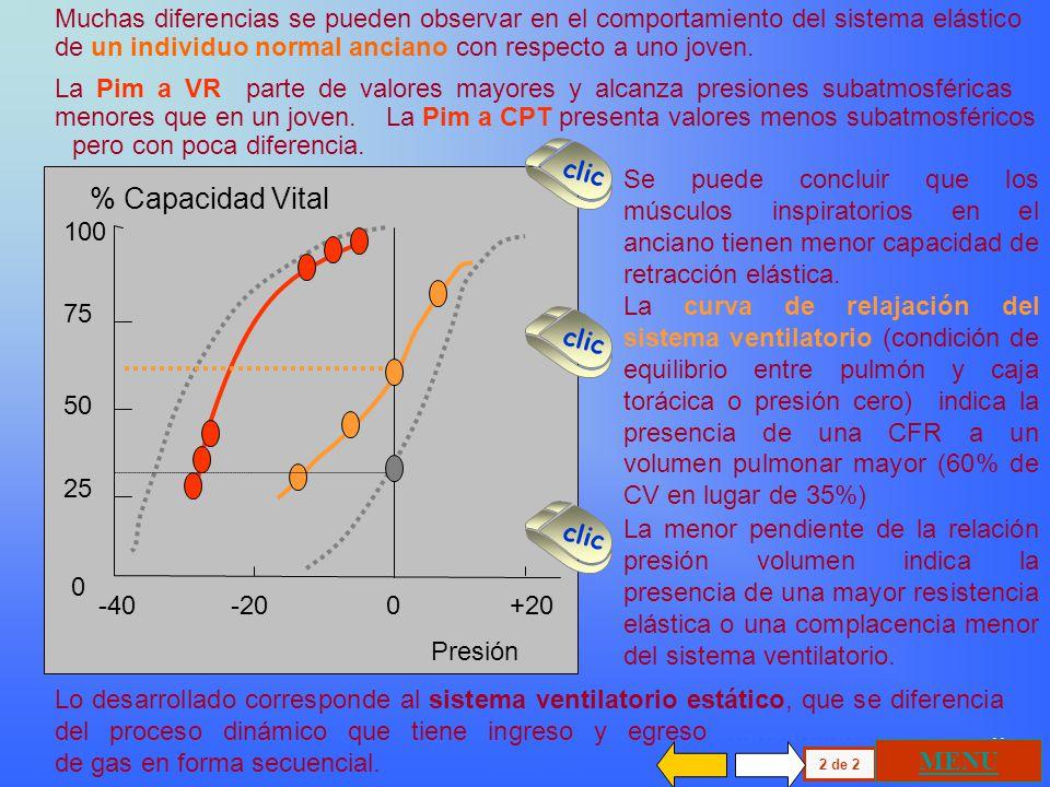 100 75 50 25 0 % Capacidad Vital Presión -100 -50 0 +50 +100 El Volumen corriente ( Vc ) se genera en condiciones de reposo entre una inspiración y un
