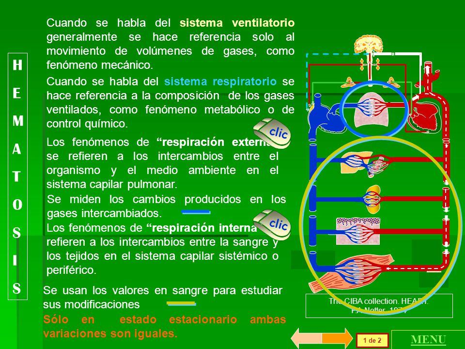 La función respiratoria de la sangre o hematosis se refiere a los mecanismos de regulación del transporte y utilización del O 2 y del CO 2, los que pe