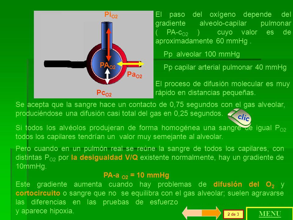 Se ha desarrollado antes en esta clase el cálculo de las presiones parciales y su relación con los gases disueltos. El gradiente inspiratorio-alveolar
