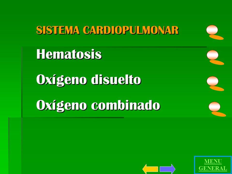SISTEMA CARDIOPULMONAR Hematosis Oxígeno disuelto Oxígeno combinado SISTEMA CARDIOPULMONAR Hematosis Oxígeno disuelto Oxígeno combinado MENU GENERAL
