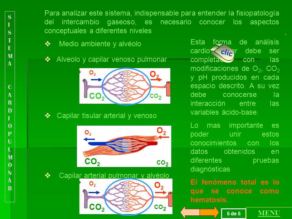 Los gases en sangre son factores moduladores del sistema cardiovascular fundamentalmente a través de los quimiorreceptores periféricos y de la acción