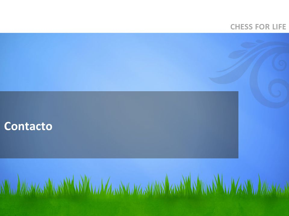 Contacto CHESS FOR LIFE