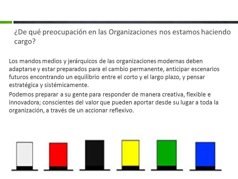 ¿De qué preocupación en las Organizaciones nos estamos haciendo cargo? Los mandos medios y jerárquicos de las organizaciones modernas deben adaptarse