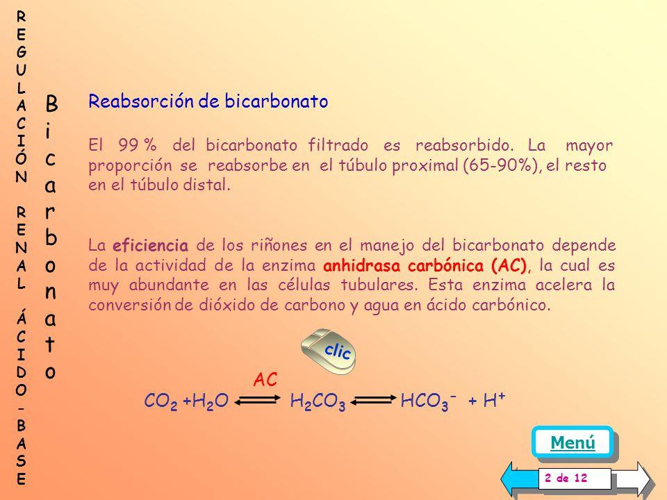 En condiciones normales, el mantenimiento de la concentración normal de bicarbonato en plasma va a depender de las siguientes funciones renales: Reabs