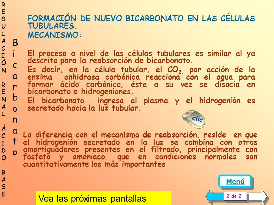 FORMACIÓN DE NUEVO BICARBONATO EN LAS CÉLULAS TUBULARES Además de recuperar el bicarbonato filtrado, las células tubulares pueden sintetizar BICARBONA
