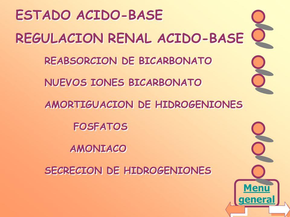 OBJETIVOS En esta clase se desarrollará la participación de los riñones en el mantenimiento del estado ácido-base. Se dará una breve introducción al t