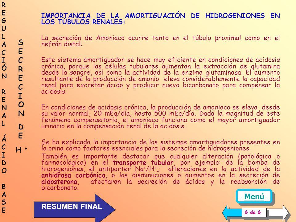 IMPORTANCIA DE LA AMORTIGUACIÓN DE HIDROGENIONES EN LOS TÚBULOS RENALES: La presencia de amortiguadores en el líquido tubular le confiere a los riñone