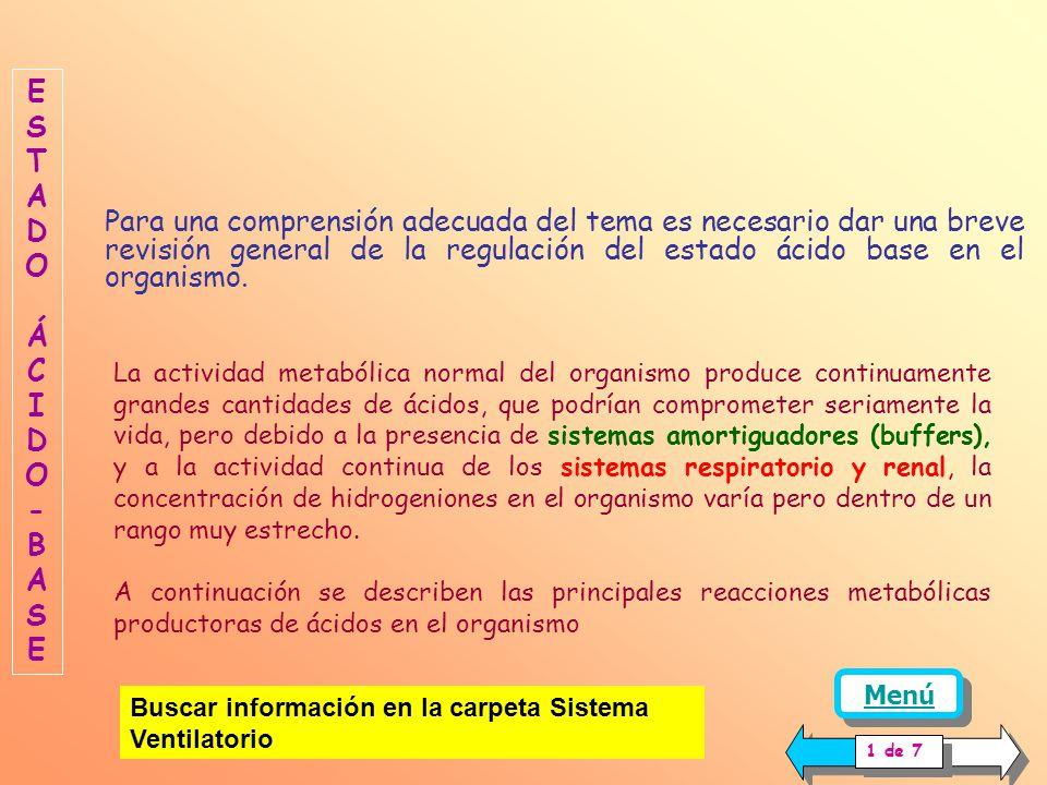 ESTADO ACIDO-BASE REGULACION RENAL ACIDO-BASE REABSORCION DE BICARBONATO NUEVOS IONES BICARBONATO AMORTIGUACION DE HIDROGENIONES FOSFATOS AMONIACO SEC