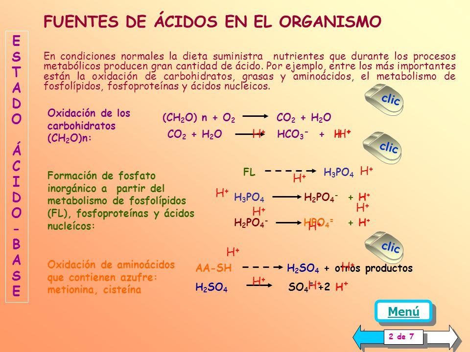 Para una comprensión adecuada del tema es necesario dar una breve revisión general de la regulación del estado ácido base en el organismo. ESTADOÁCIDO