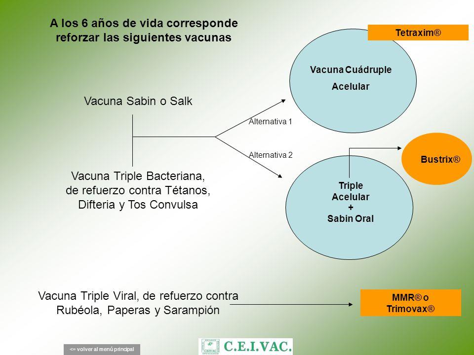A los 6 años de vida corresponde reforzar las siguientes vacunas <= volver al menú principal Tetraxim® Vacuna Sabin o Salk Vacuna Cuádruple Acelular V