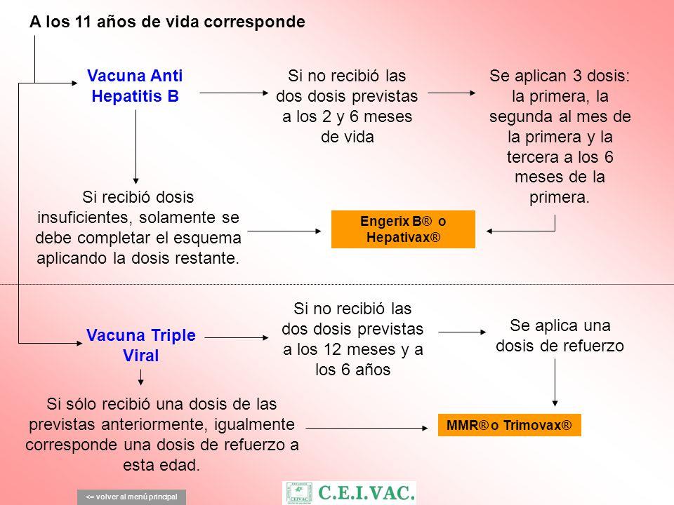 A los 11 años de vida corresponde <= volver al menú principal Si no recibió las dos dosis previstas a los 2 y 6 meses de vida Vacuna Anti Hepatitis B