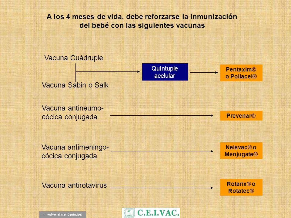 A los 4 meses de vida, debe reforzarse la inmunización del bebé con las siguientes vacunas Vacuna Sabin o Salk Vacuna Cuádruple Vacuna antineumo- cóci