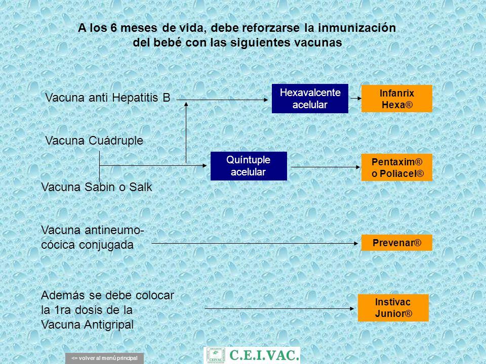 A los 12 meses de vida, debe inmunizarse al bebé contra las siguientes enfermedades Hepatitis A <= volver al menú principal Rubéola Paperas Sarampión Vacuna Triple Viral Vacuna Anti Hepatitis A MMR® o Trimovax® Havrix 720® o Avaxim 80u pediátrica® Varicela Vacuna Anti Varicela Varilrix® o Varicela Biken®