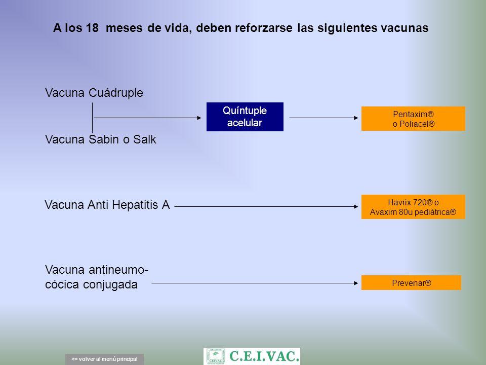 A los 18 meses de vida, deben reforzarse las siguientes vacunas <= volver al menú principal Vacuna Sabin o Salk Vacuna Cuádruple Vacuna antineumo- cóc