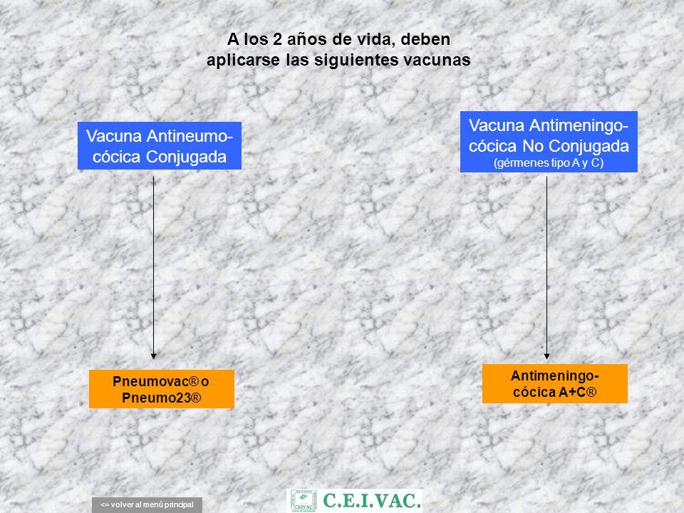 A los 2 años de vida, deben aplicarse las siguientes vacunas <= volver al menú principal Vacuna Antimeningo- cócica No Conjugada (gérmenes tipo A y C)