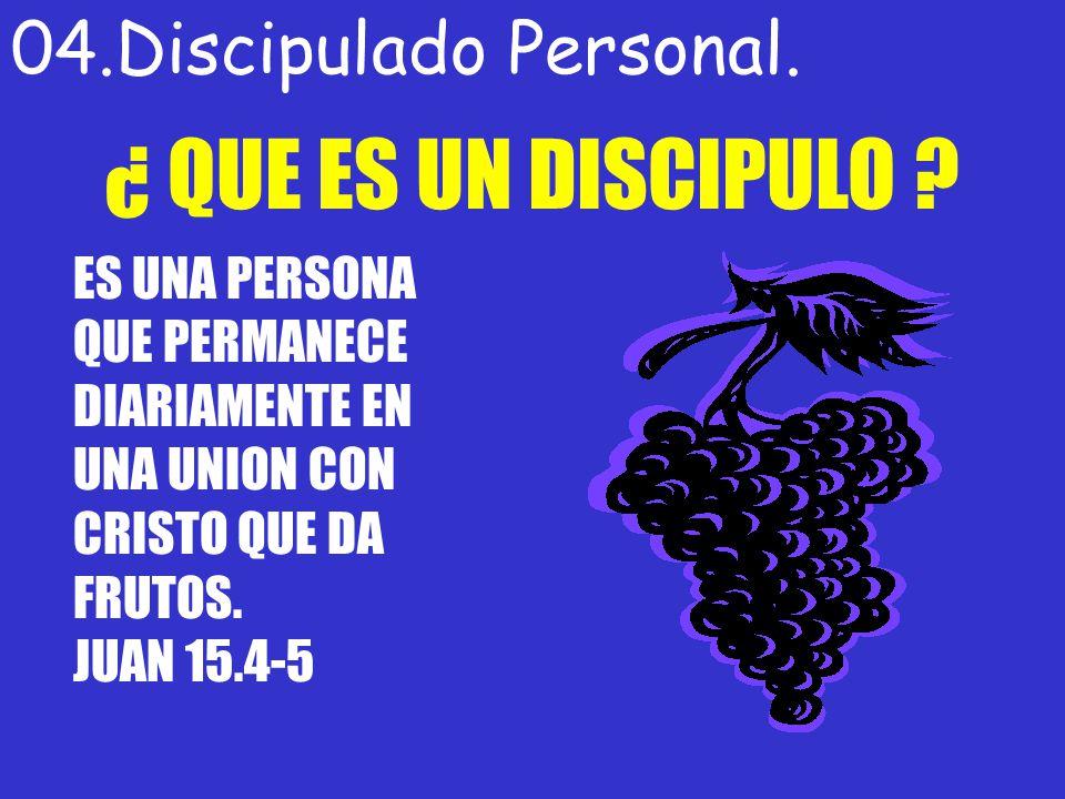 04.Discipulado Personal. ¿ QUE ES UN DISCIPULO ? ES UNA PERSONA QUE PERMANECE DIARIAMENTE EN UNA UNION CON CRISTO QUE DA FRUTOS. JUAN 15.4-5