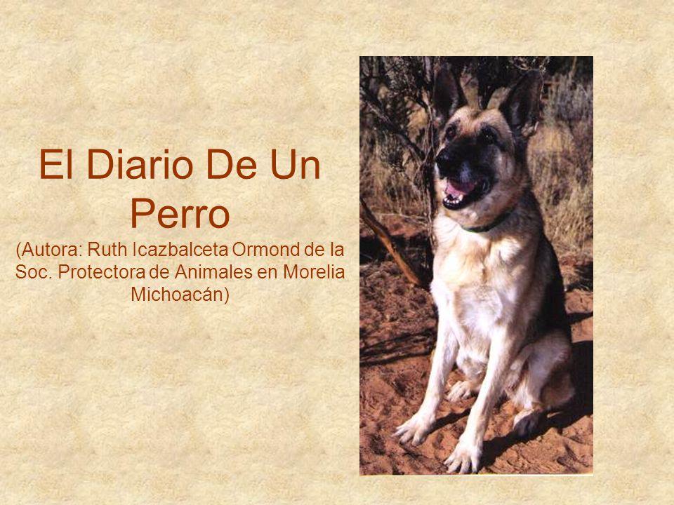 El Diario De Un Perro (Autora: Ruth Icazbalceta Ormond de la Soc. Protectora de Animales en Morelia Michoacán)