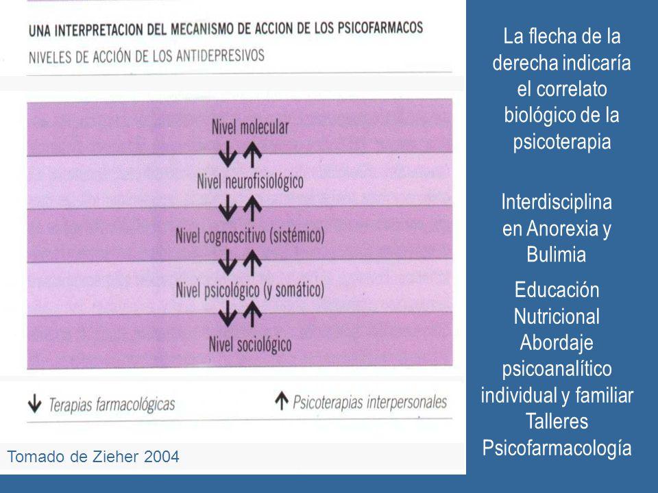 Tomado de Zieher 2004 Interdisciplina en Anorexia y Bulimia Educación Nutricional Abordaje psicoanalítico individual y familiar Talleres Psicofarmacol