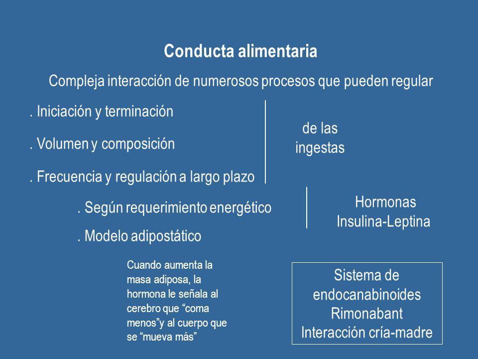 Conducta alimentaria Compleja interacción de numerosos procesos que pueden regular. Iniciación y terminación. Volumen y composición. Frecuencia y regu