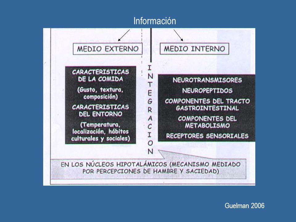 Guelman 2006 Información