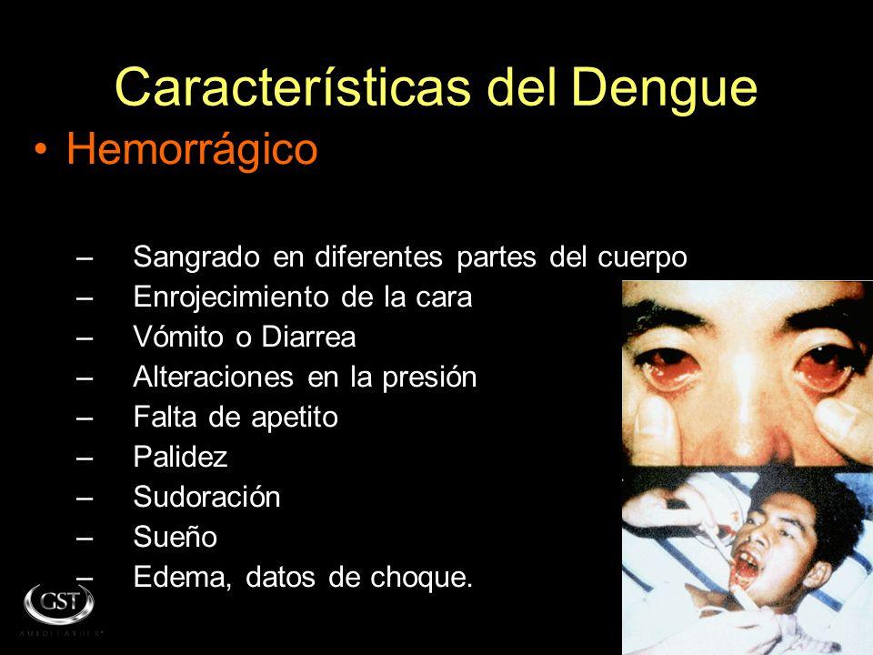 Características del Dengue Clásico –F–Fiebre alta repentina –D–Dolor intenso de: Músculos Articulaciones Huesos Cabeza Ojos