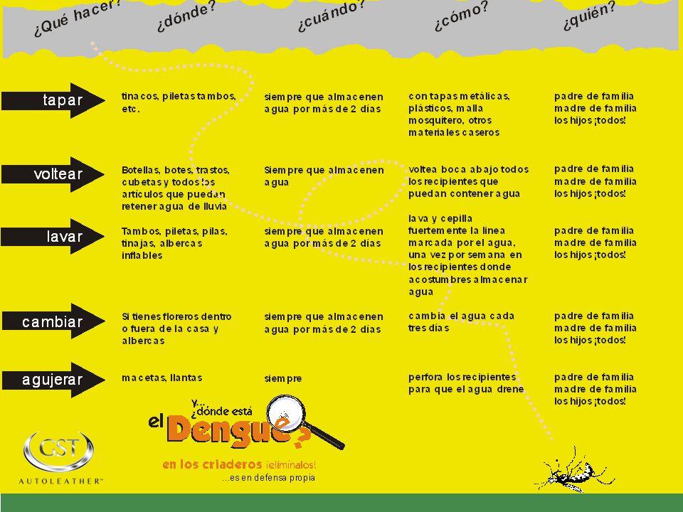 POSIBLES FORMAS DE EVITAR Y PREVENIR UN ATAQUE DEL AEDES AEGYPTIS ACCIONES INMEDIATAS SIN LARVAS NO HAY MOSQUITOS Aedes aegypti La unica medida efecti