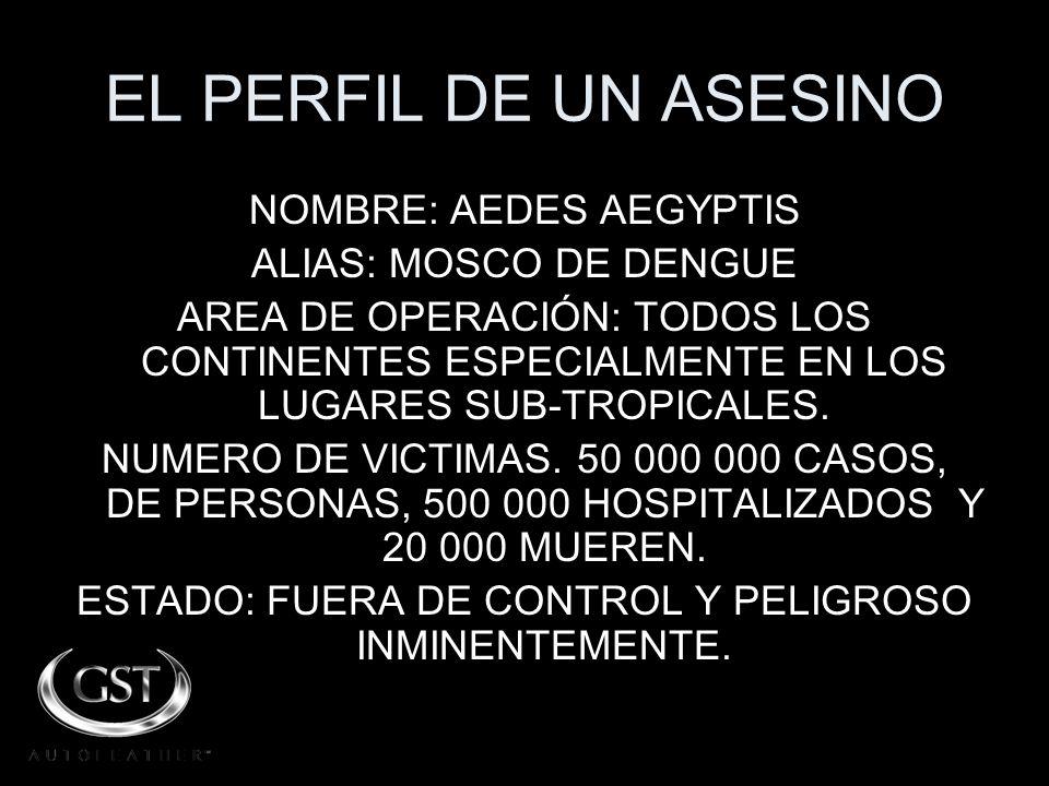 EL PERFIL DE UN ASESINO NOMBRE: AEDES AEGYPTIS ALIAS: MOSCO DE DENGUE AREA DE OPERACIÓN: TODOS LOS CONTINENTES ESPECIALMENTE EN LOS LUGARES SUB-TROPICALES.