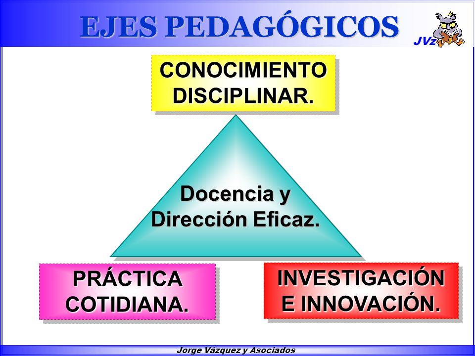 Jorge Vázquez y Asociados CONOCIMIENTO DISCIPLINAR.