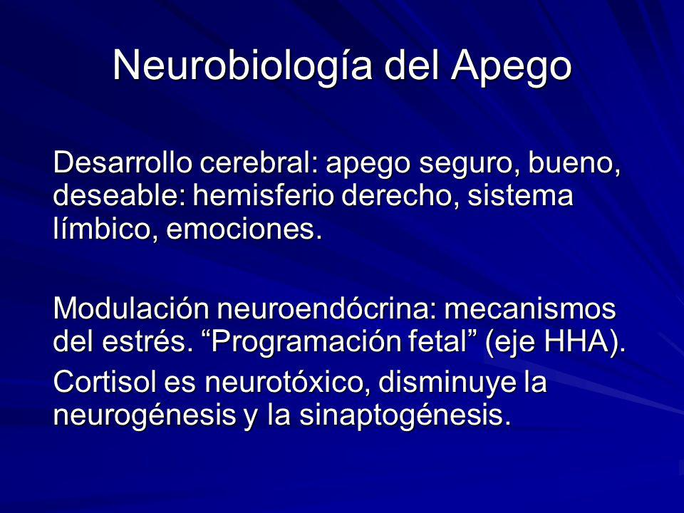 Apego-regulación eje HPA Cortisol salival- tipo de apego Gunnar M R, Donzella.B 2000 Social regulation of the HPA axis in early human development Psychoneuroendocrinology, 27,199-220